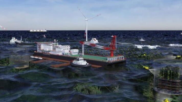 Australia earmarks $329 million for offshore aquaculture developments thumbnail image