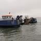 Dorset to host England's aquaculture innovation centre thumbnail image