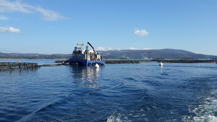 New report suggests that aquaculture sales in the EU fell 17 percent due to pandemic thumbnail image