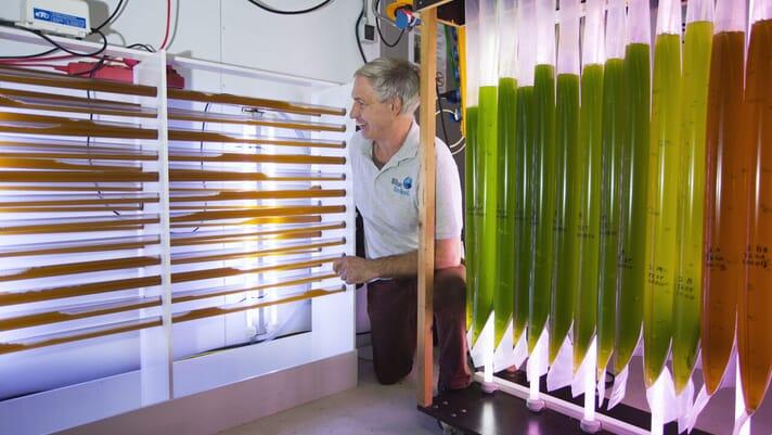 Towards circular aquaculture thumbnail image