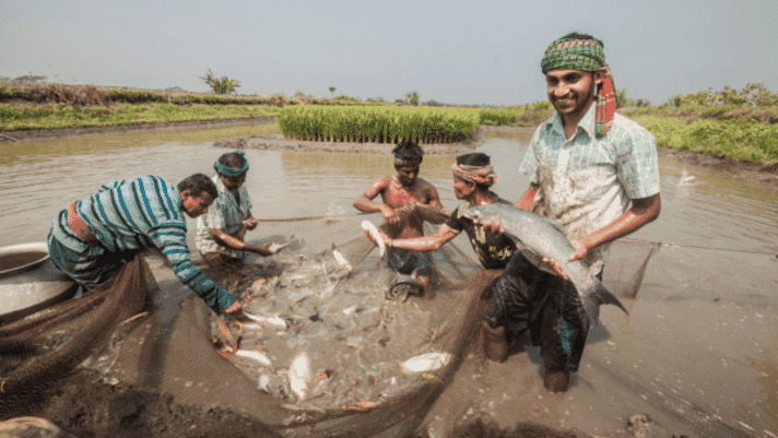 The species and geographies set to spearhead the growth of global aquaculture thumbnail image