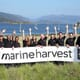 Marine Harvest's Kyleakin feed plant management team in place  thumbnail image