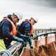Green light for new Scottish salmon farm thumbnail image