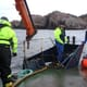 Salmon producer backs sea trout tracking project thumbnail image