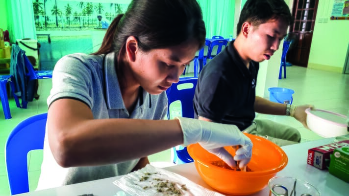 Why labs are crucial for Indonesia's shrimp farmers thumbnail image