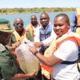 Aquaculture provides a break for Zimbabwe's prisoners thumbnail image