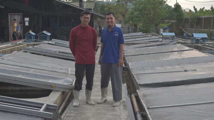 Could Indonesia's fledgling eel farming sector be on the cusp of a breakthrough? thumbnail image