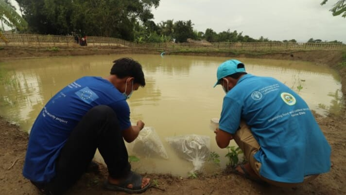 FAO and EU support small-scale aquaculture in Myanmar thumbnail image
