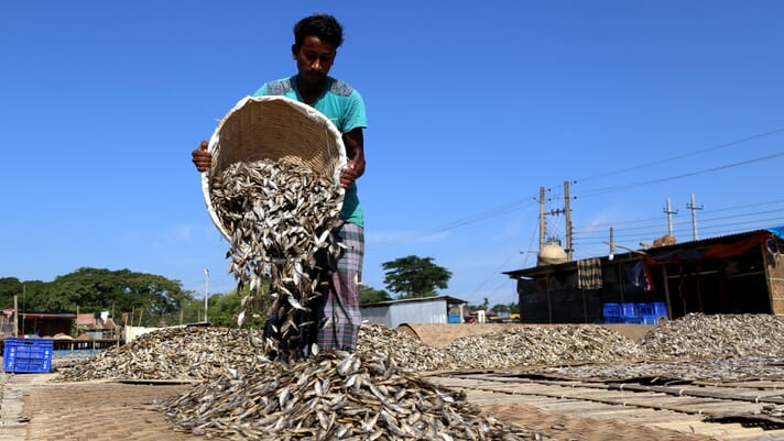 A compelling case for aquaculture's role in global food security thumbnail image
