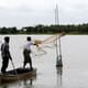 The future of fish farming in Myanmar thumbnail image