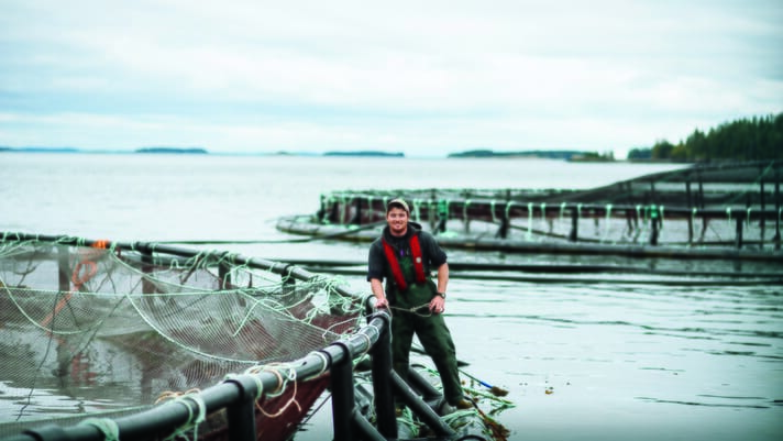 Contrasting fortunes for aquaculture on Canada's east and west coasts thumbnail image