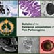 Fish pathology picture contest: pick a winner today thumbnail image