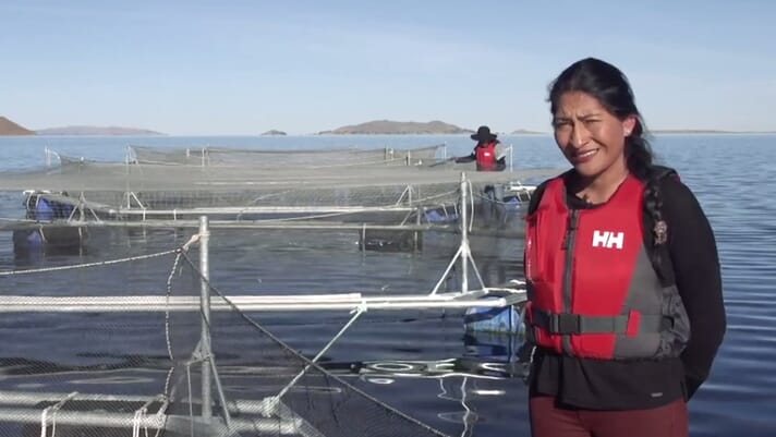 Female trout and oyster farmers star in seafood film prize thumbnail image