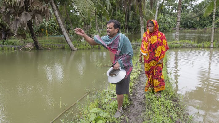 Policymakers should give more support to small-scale aquaculture ventures, says new research thumbnail image