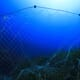 Fishermen share tips on reducing ghost gear thumbnail image