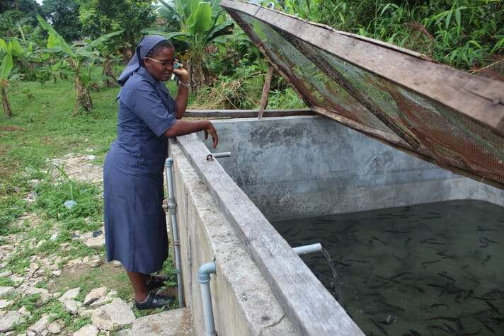 After a disastrous debut in aquaculture, Sister Okparaeke is producing catfish successfully following training