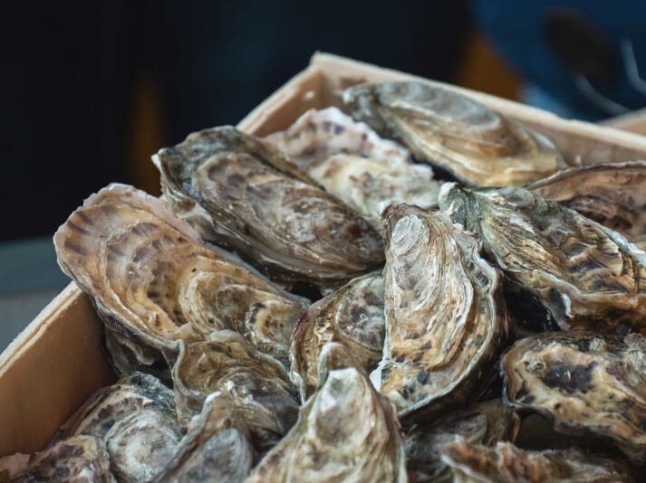 The project has attracted support from across the shellfish farming sector
