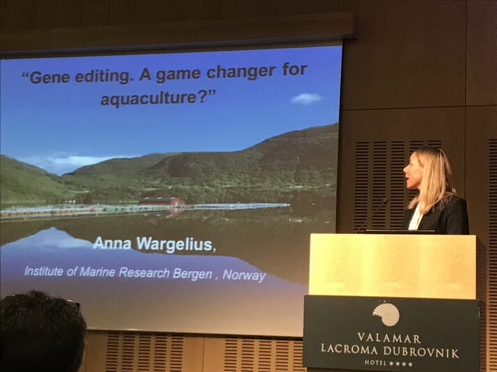 Anna Wargelius explains the excitement surrounding the use of CRISPR Cas 9 technology in aquaculture.