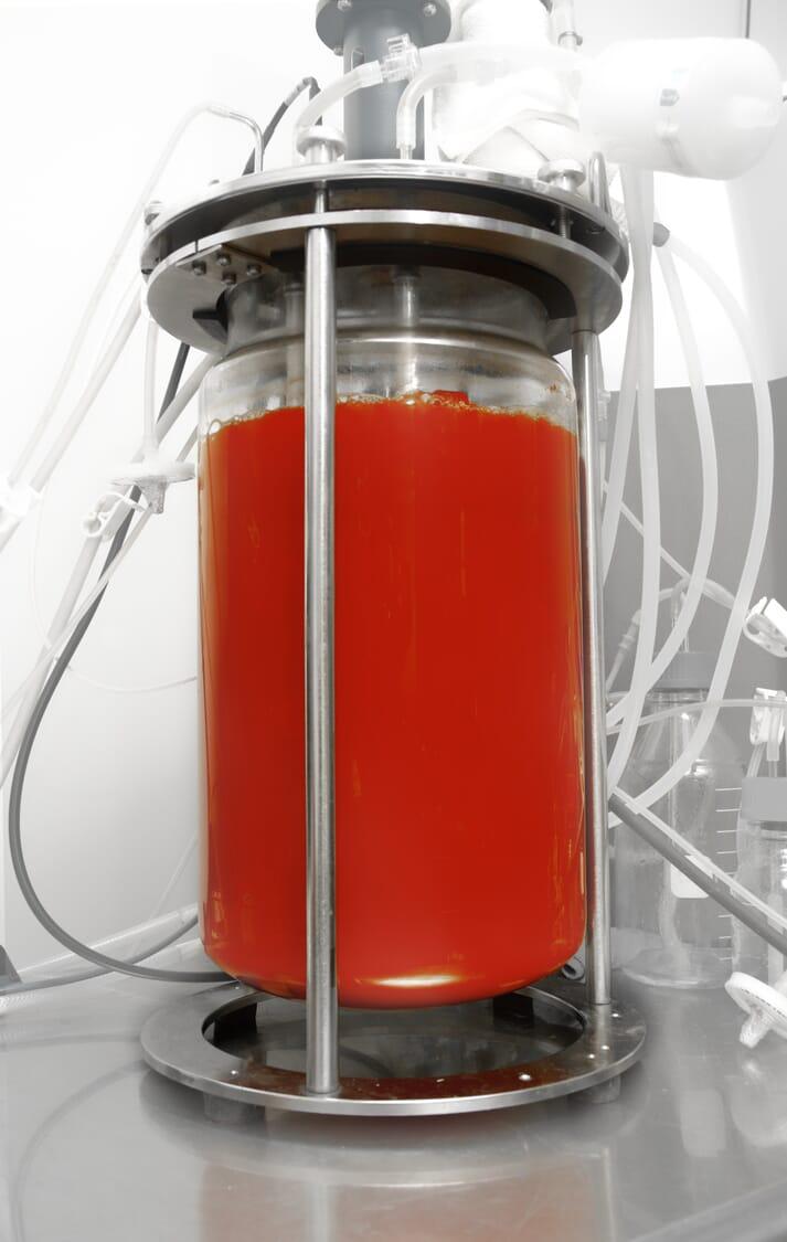 KAS has developed a system to produce astaxanthin-rich algae using a process of dark fermentation