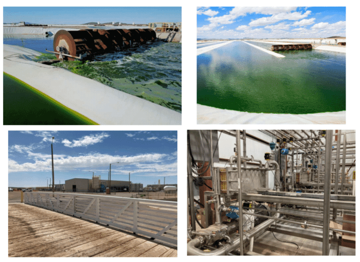 Green Stream Farms is the world's second largest producer of microalgae