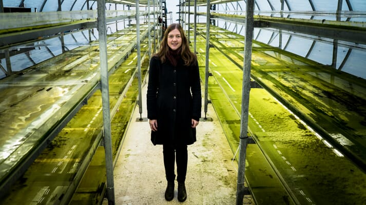 Sofie Allert, CEO and co-founder of Swedish Algae Factory
