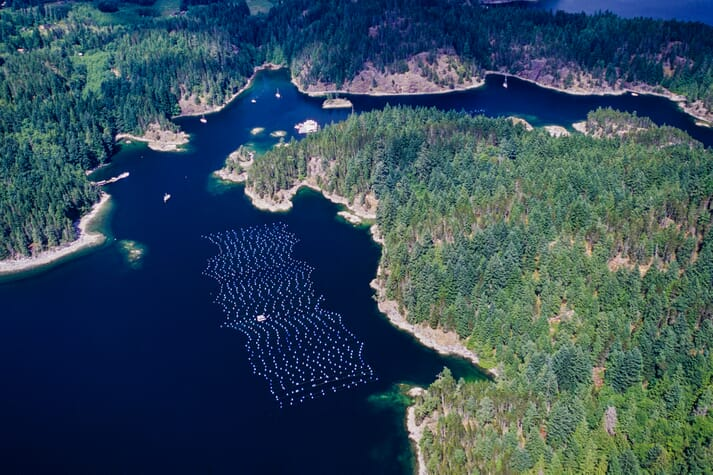 Canada's fisheries minister, Bernadette Jordan, is supporting some forms of aquaculture in BC, but is strongly opposed to open net pen salmon farming in the province