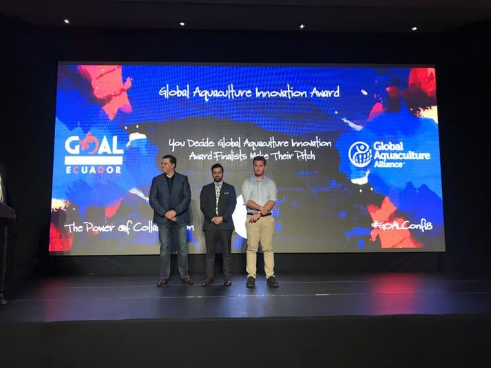 The three finalists