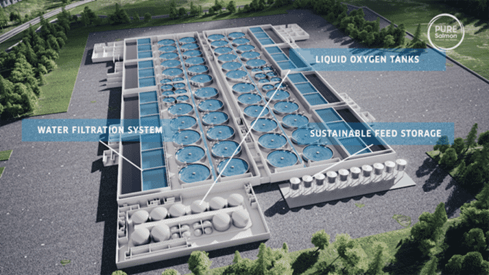 The planned layout of Pure Salmon's 20,000 tonne per annum facility in Virginia, USA