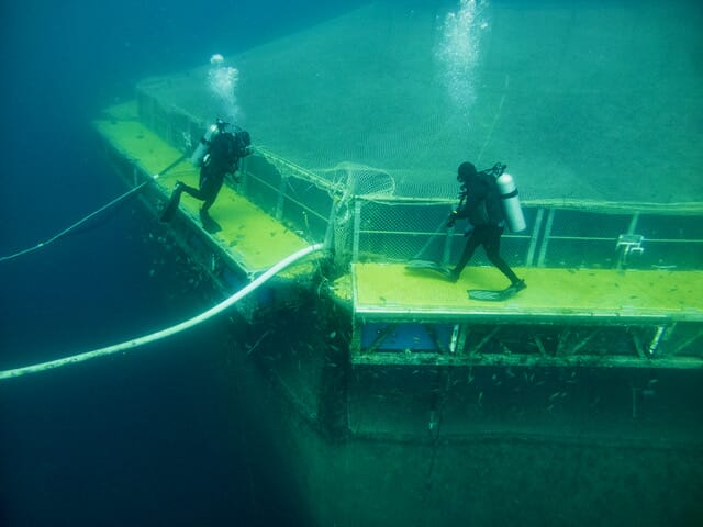 Earth Ocean Farms operates submersible cages