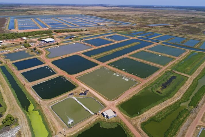 Aquaculture ponds in Australia's Northern Territory