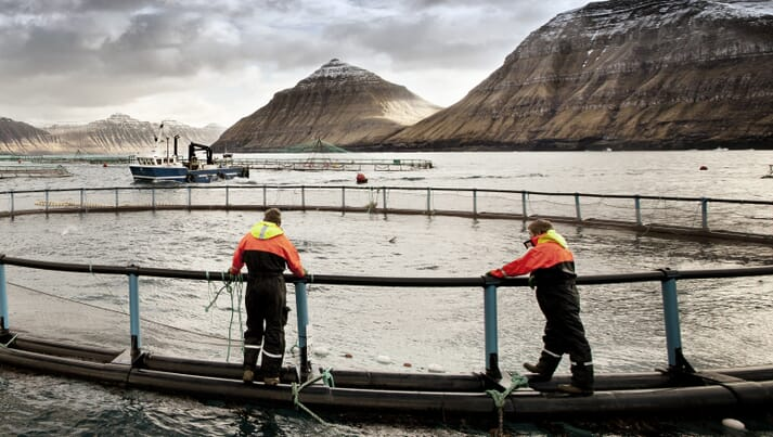 Two fish farmers standing on a salmon farm net pen in the Faroe Islands