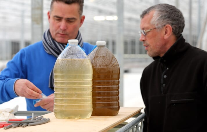 William van der Riet, TomAlgae's CEO, on the left, and Dr Victor Chepurnov, chief scientist and manager of application and development at the company's diatom production unit in Belgium