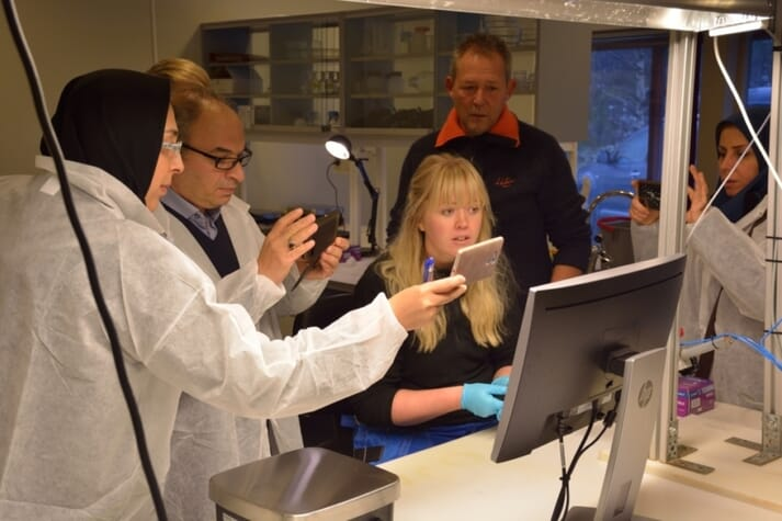 Heidi Hegg Skjønhaug from SalmoBreed demonstrates the marking of fish together with CEO Tom Olsen.