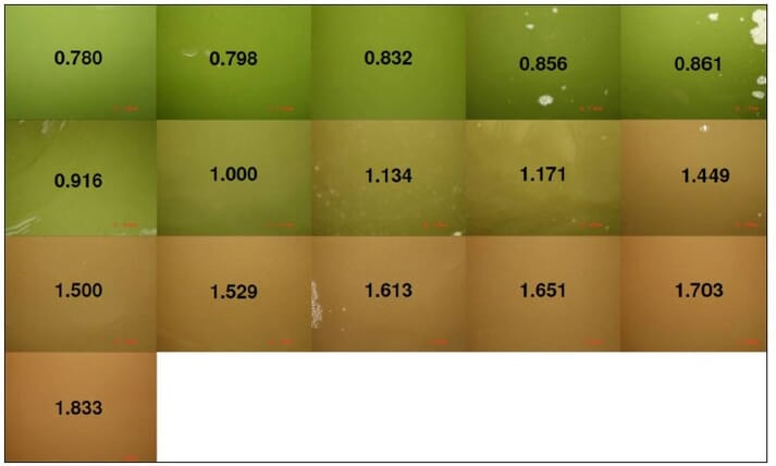 The Microbial Community Color Index (MCCI) indicates the transition from an algal-dominated system to a bacterial-dominated system