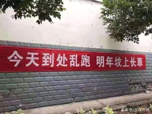 """""""Today you roam, tomorrow you sleep in a tomb"""": a stark warning against travel left over from the height of China's fears over COVID-19"""