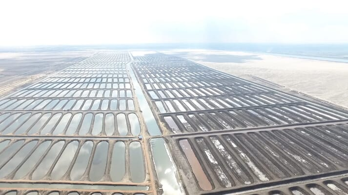 An aerial view of fish ponds beside the Suez canal