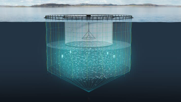 The study took place in a special Tubenet, which keeps fish below the area of the water column favoured by sea lice