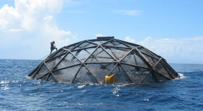 innovaSea's offshore aquaculture systems include the Aquapod