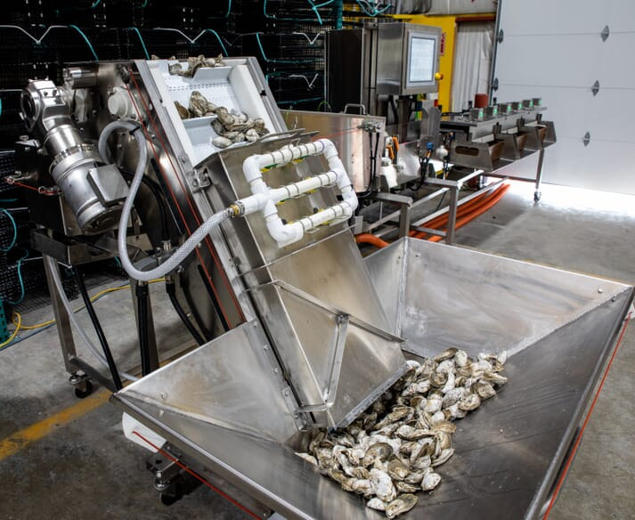 Pearlception: first laser-guided oyster processing system in US