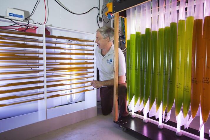 Michael Laterveer beside Blue Linked's algae production facility