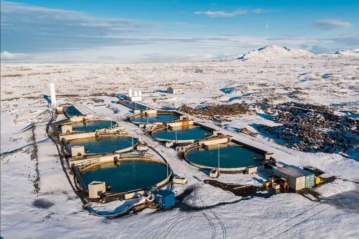 Aqua-Spark's investments include the Icelandic land-based char producer, Matorka