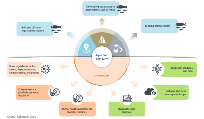 How aquafeed players can become innovation drivers in the aquaculture industry