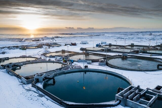 Matorka - an char farming company in Iceland - was one of Aqua-Spark's earliest investments