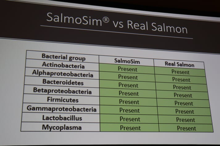 The bacterial communities in a salmon's gut play a key role in how efficiently feed is digested, and therefore impact factors including growth rates