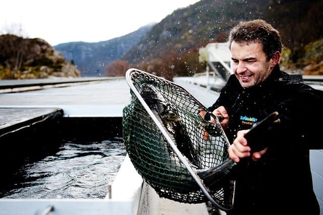 Sognaqua, a land-based Norwegian halibut farming firm is among Aqua-Spark's investments