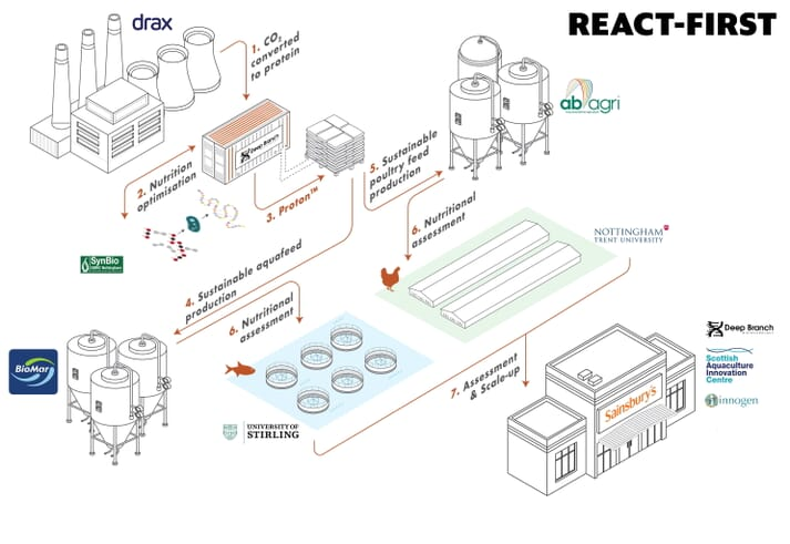 The project aims to produce a feed ingredient made from single-cell organisms which are grown using excess carbon dioxide from a power plant