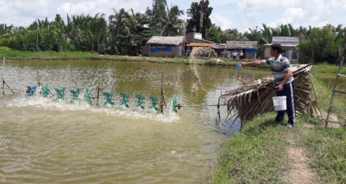 The novel strategy improved Bangladeshi fish farmers' incomes by 22 percent