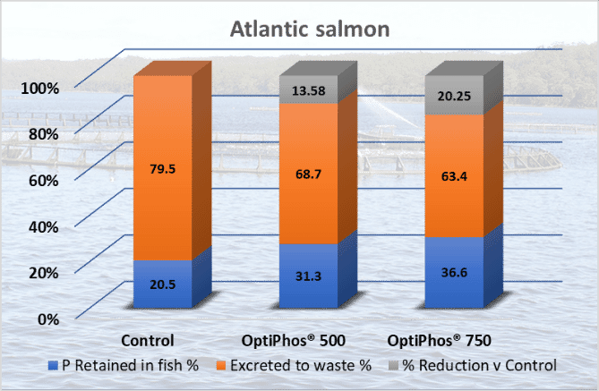 Atlantic salmon P retention, excretion and reduction vs control using OptiPhos at 500 and 750 OTU/kg