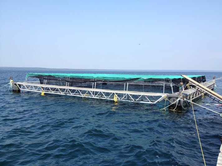 Jeff Tuerk designed and built his own submersible cage and is now looking for funding to build another one