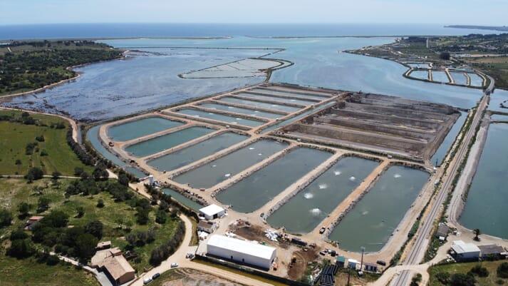 The Blue Edge pilot platform has been trialled successfully at the Viveiros da Espargueira sea bream farm in Portugal
